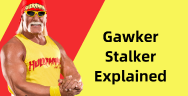 Thumbnail for Gawker Stalker Explained (Stalking Celebrities)