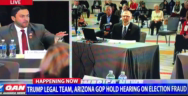 "Thumbnail for Election2020 > Arizona Hearing: ""Are you willing to say under oath, that you've seen the connection to the internet, that you've seen it go offshore to Frankfurt, Germany?"""