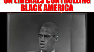 "Thumbnail for Malcolm X : ""White Liberals Are The Most Dangerous Thing In The Entire Western Hemisphere"""